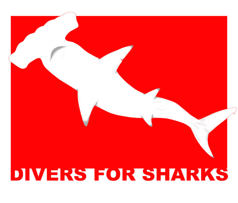 Divers for Sharks, Canoas, Brazil