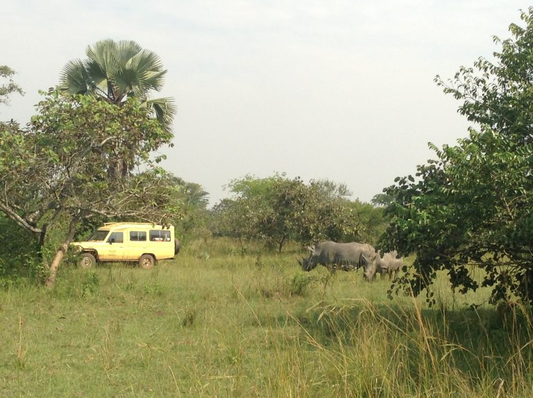 Silverback Travel Company Ltd, Uganda