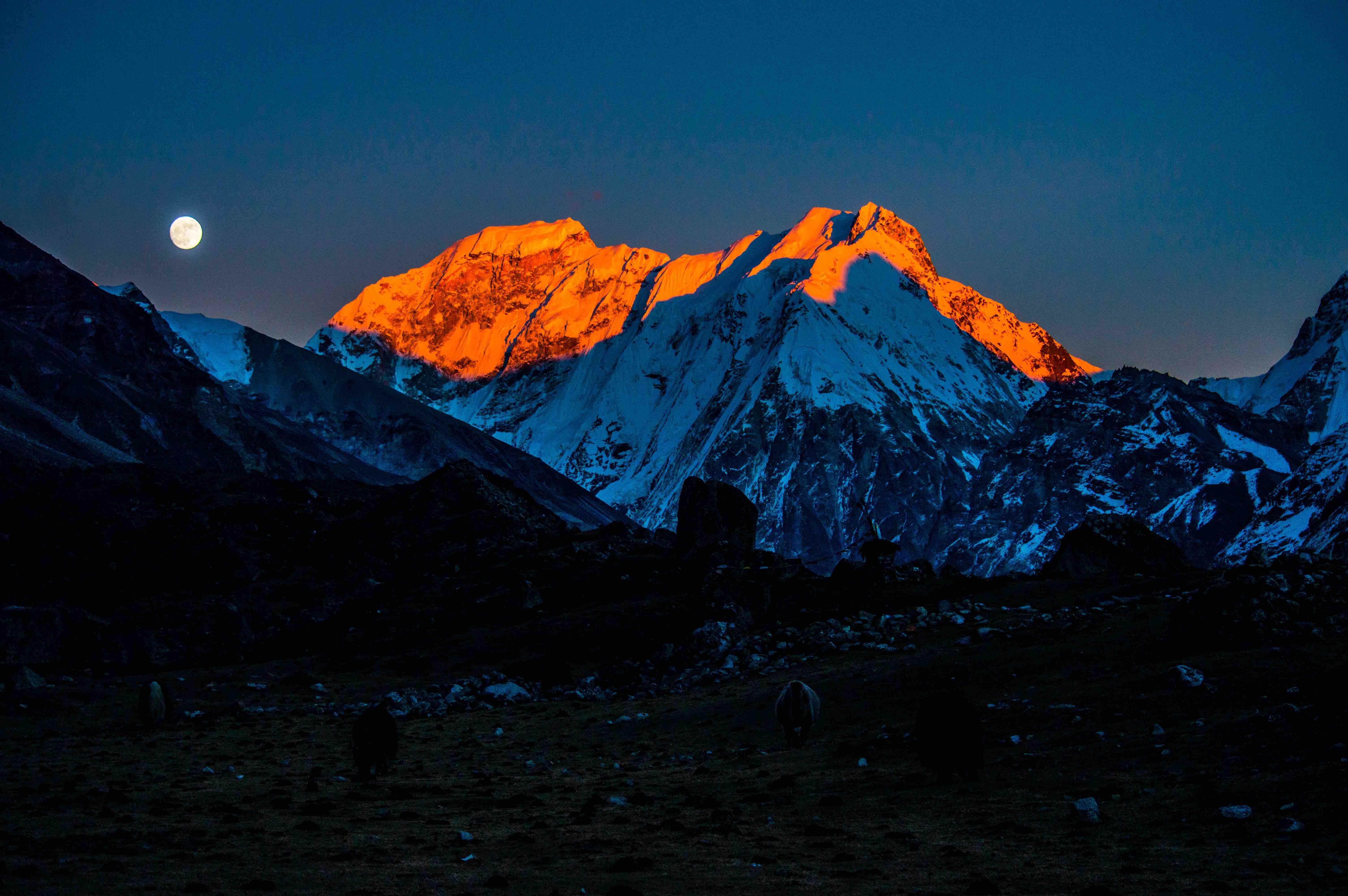 Mission Eco Trek & Expedition P(ltd), Nepal